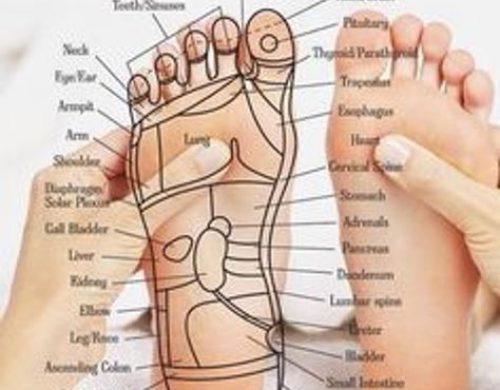 foot z